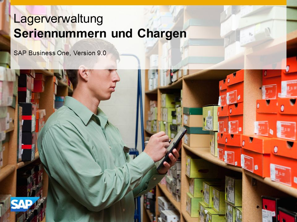 INTERN Lagerverwaltung Seriennummern und Chargen SAP Business One, Version 9.0