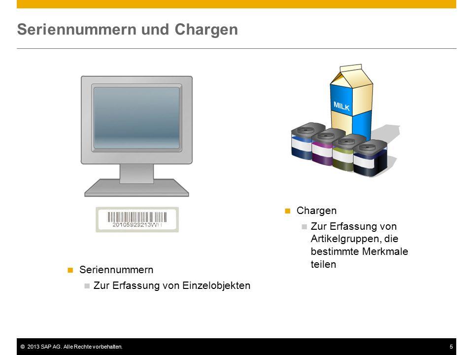©2013 SAP AG. Alle Rechte vorbehalten.5 Seriennummern und Chargen Seriennummern Zur Erfassung von Einzelobjekten Chargen Zur Erfassung von Artikelgrup