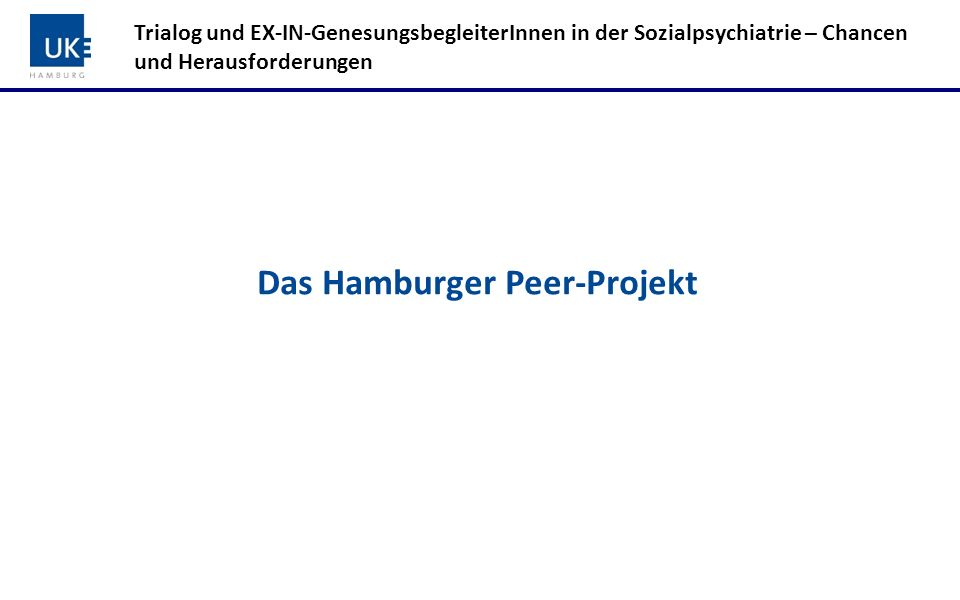 Das Hamburger Peer-Projekt