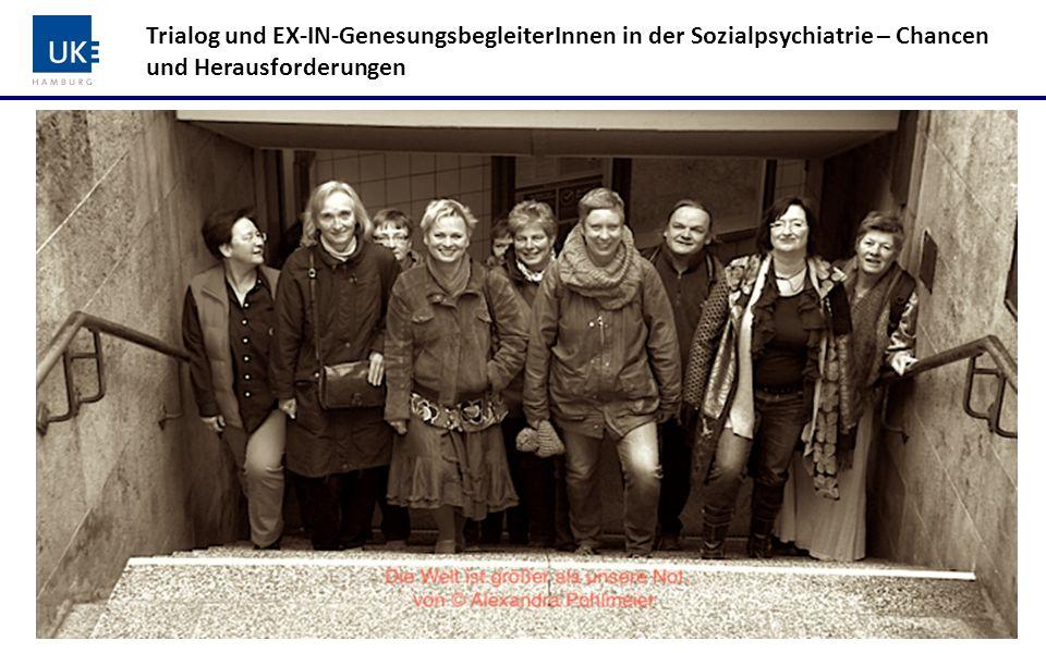 Trialog und EX-IN-GenesungsbegleiterInnen in der Sozialpsychiatrie – Chancen und Herausforderungen Zusammenfassung der Ergebnisse