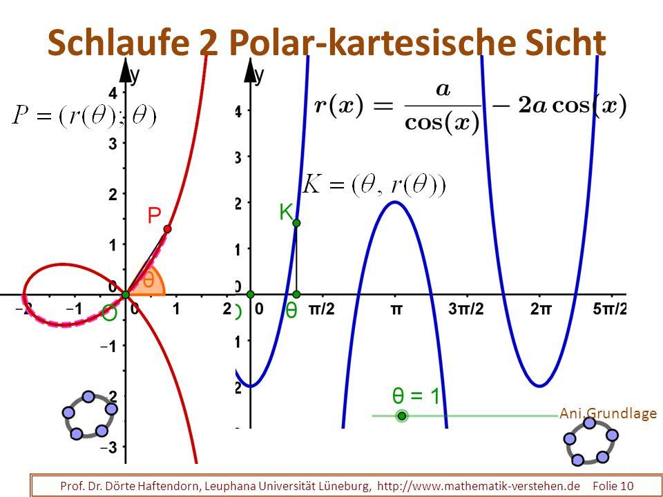 Schlaufe 2 Polar-kartesische Sicht Prof. Dr. Dörte Haftendorn, Leuphana Universität Lüneburg, http://www.mathematik-verstehen.de Folie 10 Ani.Grundlag