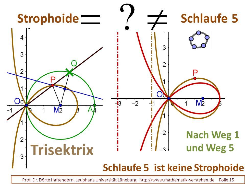 Strophoide Schlaufe 5 Prof. Dr. Dörte Haftendorn, Leuphana Universität Lüneburg, http://www.mathematik-verstehen.de Folie 15 Nach Weg 1 und Weg 5 Schl