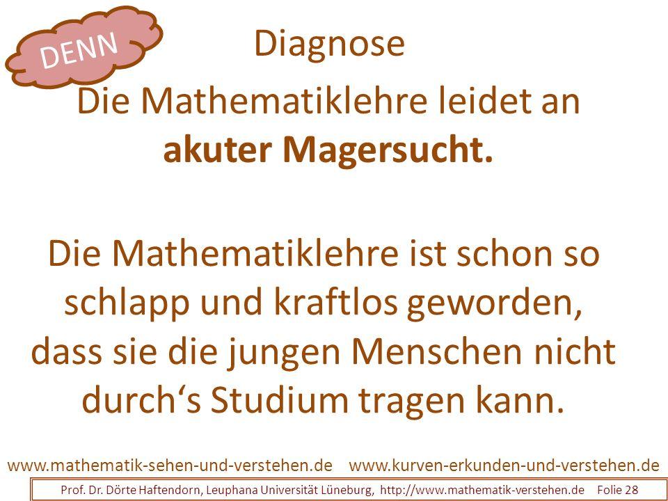 Diagnose Prof. Dr. Dörte Haftendorn, Leuphana Universität Lüneburg, http://www.mathematik-verstehen.de Folie 28 www.kurven-erkunden-und-verstehen.deww