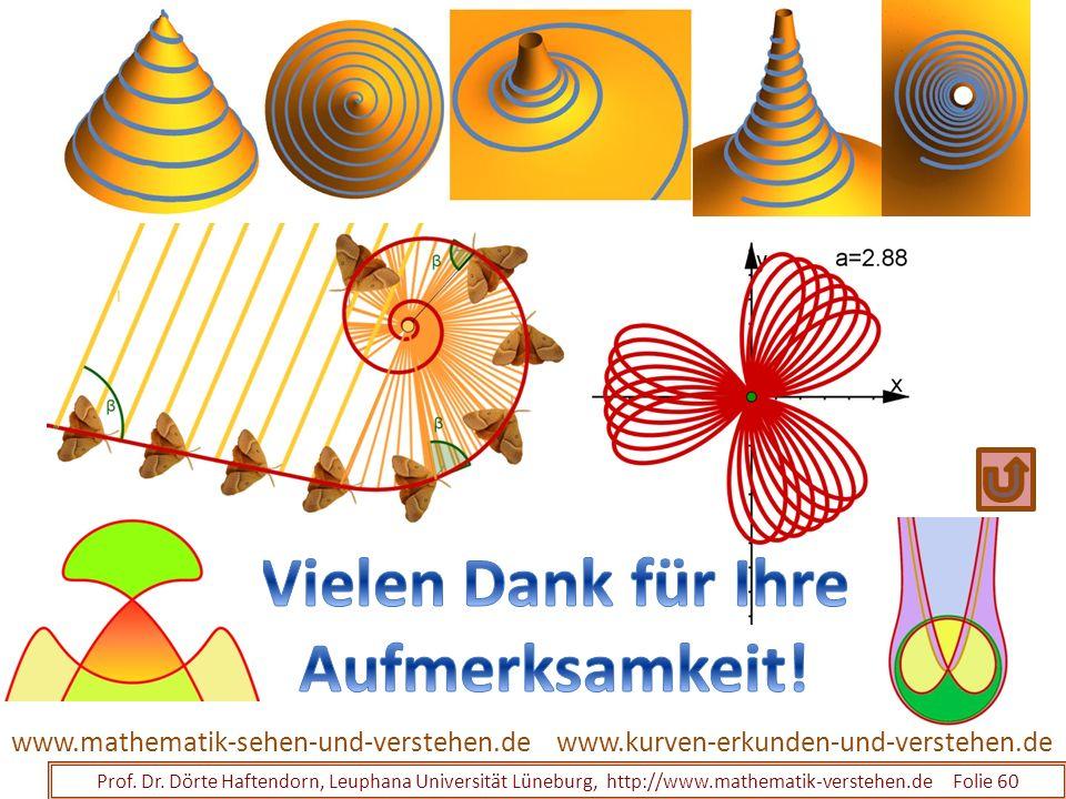 Prof. Dr. Dörte Haftendorn, Leuphana Universität Lüneburg, http://www.mathematik-verstehen.de Folie 60 www.kurven-erkunden-und-verstehen.dewww.mathema