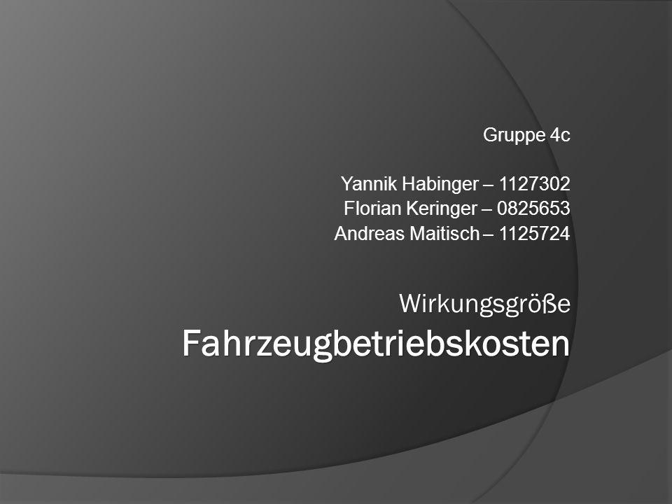 Gruppe 4c Yannik Habinger – 1127302 Florian Keringer – 0825653 Andreas Maitisch – 1125724
