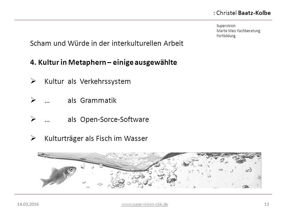 :Christel Baatz-Kolbe Supervision Marte Meo Fachberatung Fortbildung www.supervision-cbk.de 14.03.201613 Scham und Würde in der interkulturellen Arbei