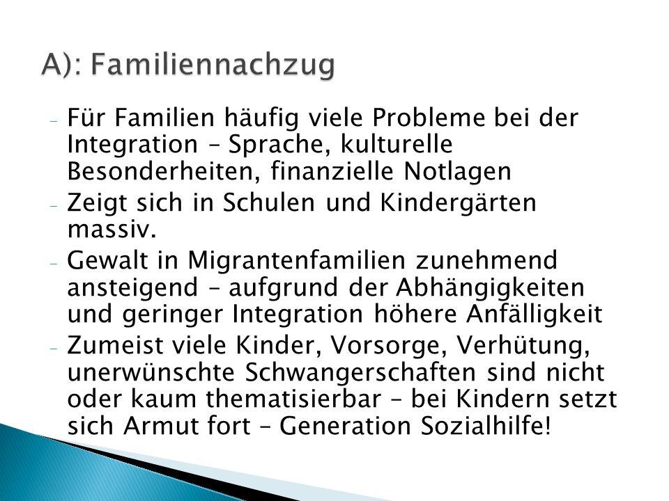 - Für Familien häufig viele Probleme bei der Integration – Sprache, kulturelle Besonderheiten, finanzielle Notlagen - Zeigt sich in Schulen und Kindergärten massiv.