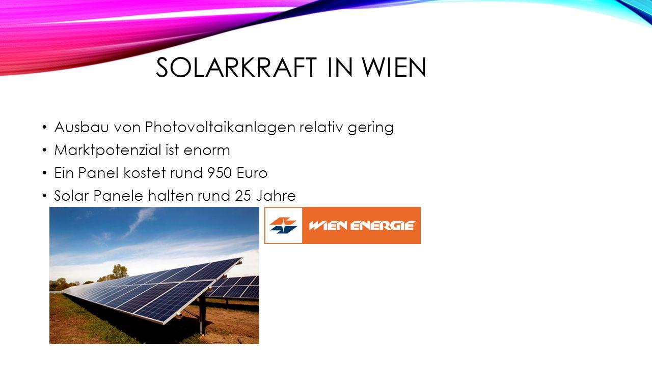 SOLARKRAFT IN WIEN Ausbau von Photovoltaikanlagen relativ gering Marktpotenzial ist enorm Ein Panel kostet rund 950 Euro Solar Panele halten rund 25 J