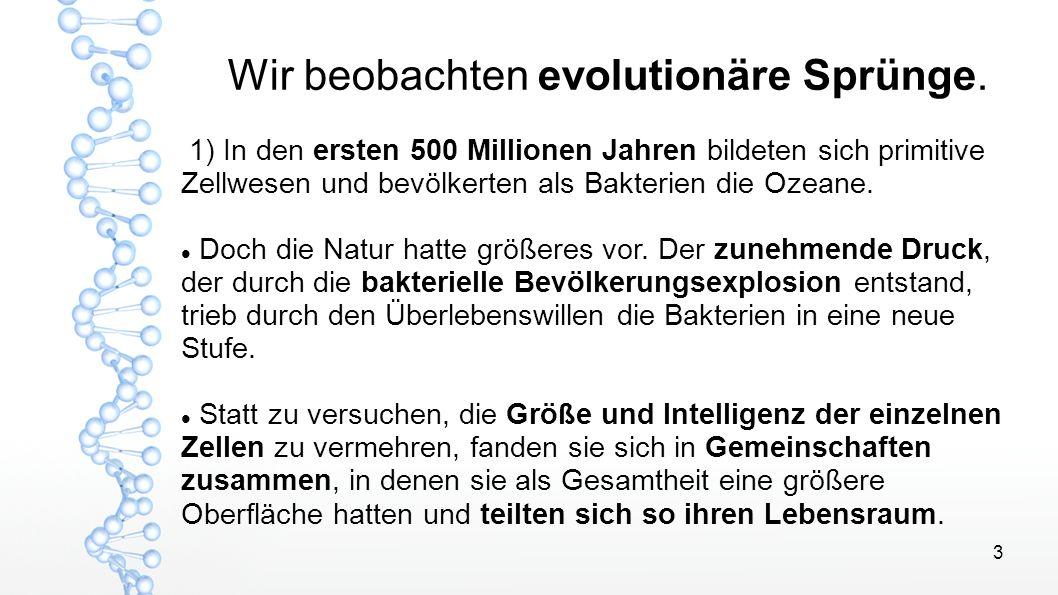 3 Wir beobachten evolutionäre Sprünge. 1) In den ersten 500 Millionen Jahren bildeten sich primitive Zellwesen und bevölkerten als Bakterien die Ozean