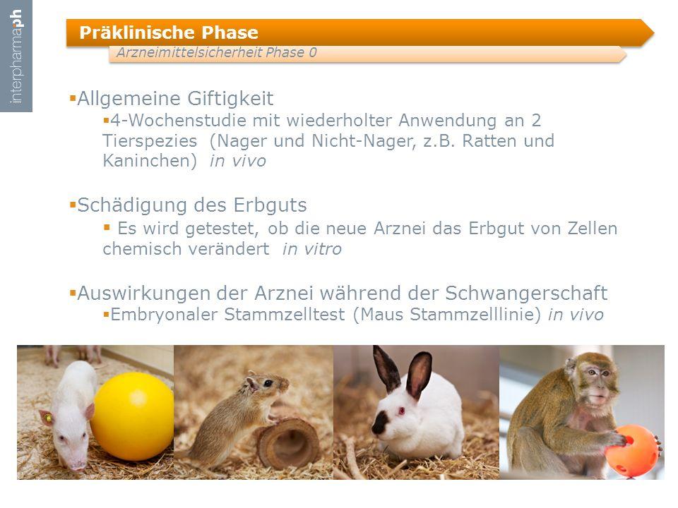 Präklinische Phase Arzneimittelsicherheit Phase 0  Allgemeine Giftigkeit  4-Wochenstudie mit wiederholter Anwendung an 2 Tierspezies (Nager und Nicht-Nager, z.B.