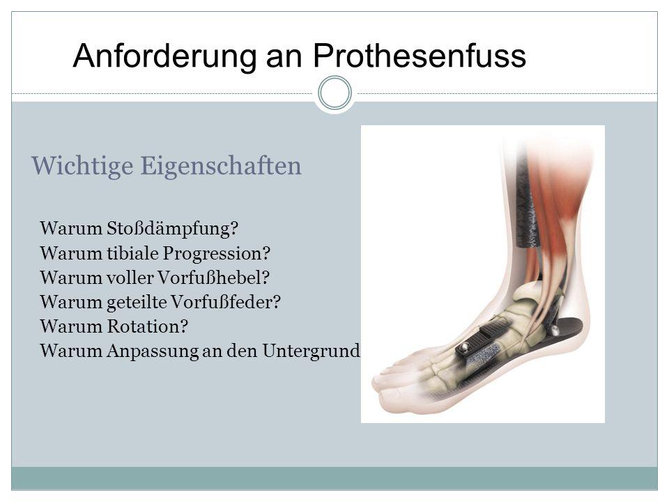Anforderung an Prothesenfuss Wichtige Eigenschaften Warum Stoßdämpfung? Warum tibiale Progression? Warum voller Vorfußhebel? Warum geteilte Vorfußfede