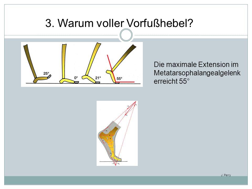 Die maximale Extension im Metatarsophalangealgelenk erreicht 55° J. Perry 3. Warum voller Vorfußhebel?