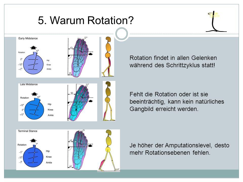 Rotation findet in allen Gelenken während des Schrittzyklus statt! Fehlt die Rotation oder ist sie beeinträchtig, kann kein natürliches Gangbild errei