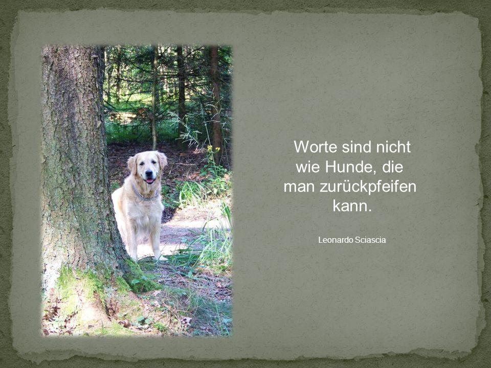 Worte sind nicht wie Hunde, die man zurückpfeifen kann. Leonardo Sciascia
