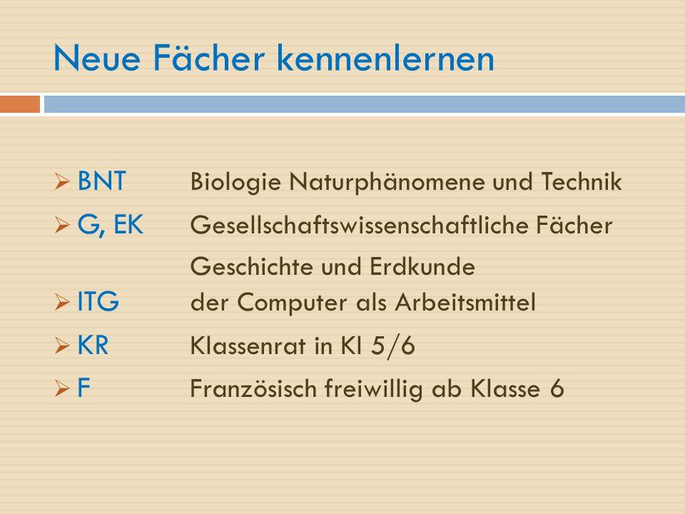 Neue Fächer kennenlernen  BNT Biologie Naturphänomene und Technik  G, EK Gesellschaftswissenschaftliche Fächer Geschichte und Erdkunde  ITG der Computer als Arbeitsmittel  KR Klassenrat in Kl 5/6  F Französisch freiwillig ab Klasse 6