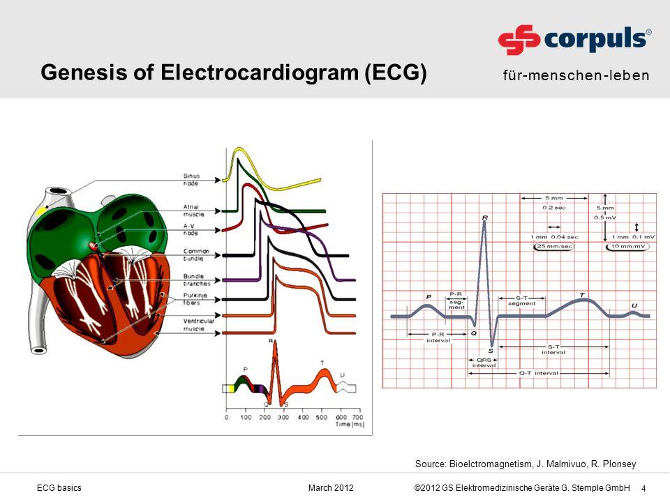für-menschen-leben ©2012 GS Elektromedizinische Geräte G. Stemple GmbHMarch 2012ECG basics 4 Genesis of Electrocardiogram (ECG) Source: Bioelctromagne