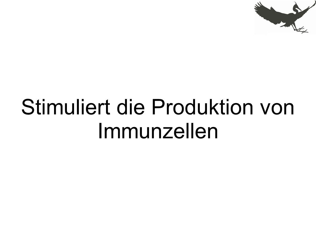 Stimuliert die Produktion von Immunzellen