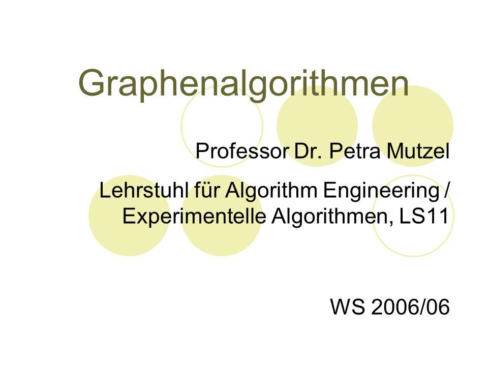 Graphenalgorithmen Professor Dr. Petra Mutzel Lehrstuhl für Algorithm Engineering / Experimentelle Algorithmen, LS11 WS 2006/06