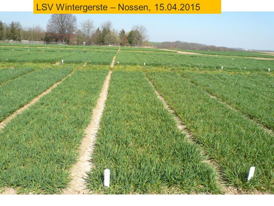 LSV Wintergerste – Nossen, 15.04.2015