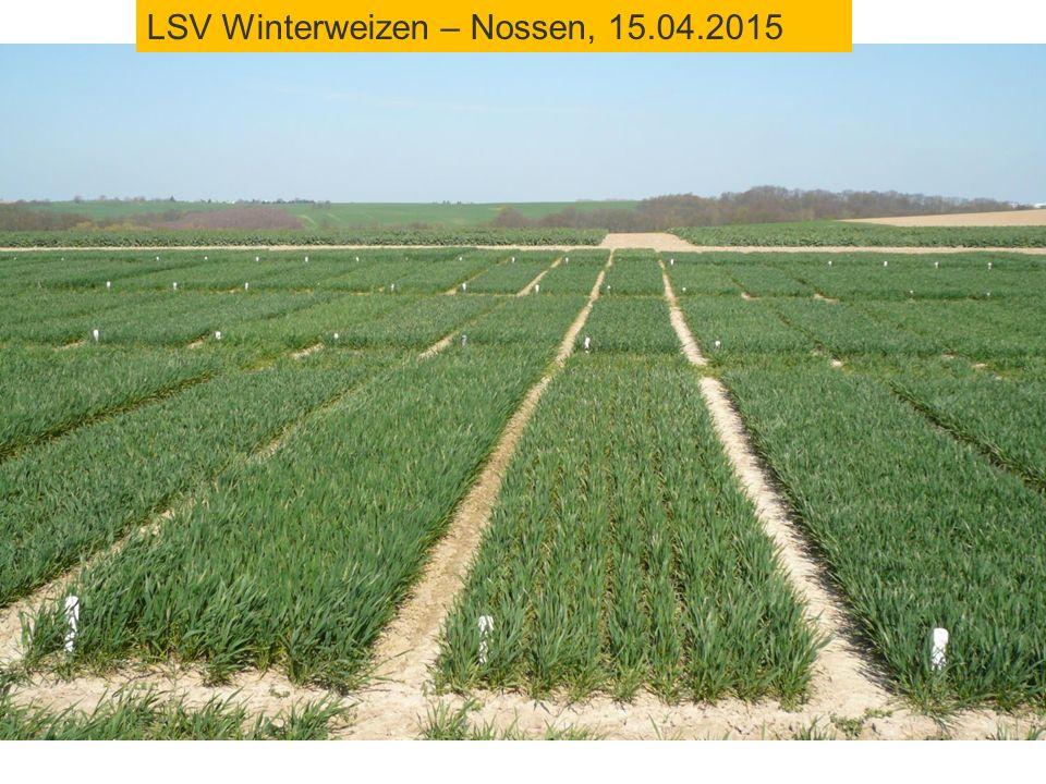 LSV Winterweizen – Nossen, 15.04.2015