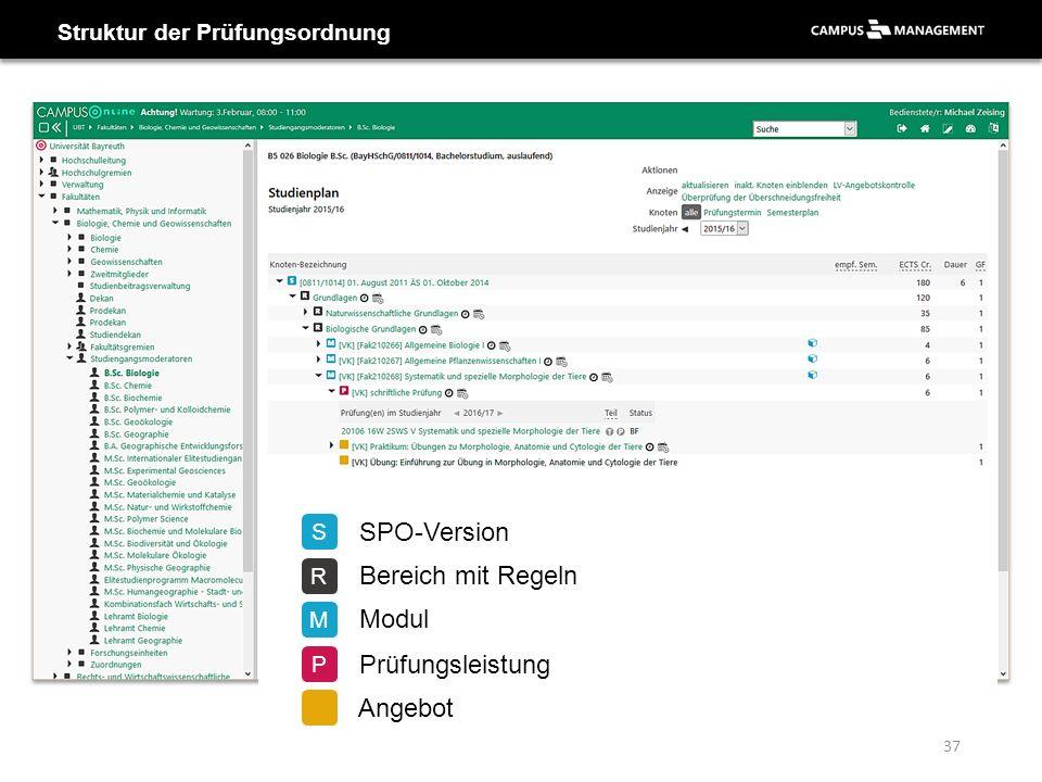 37 Struktur der Prüfungsordnung S SPO-Version R Bereich mit Regeln M Modul P Prüfungsleistung Angebot