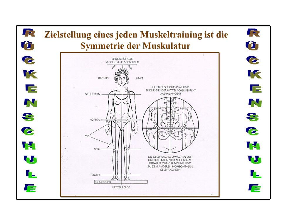 Muskuläre Dysbalancen am Beispiel der Beckenstellung