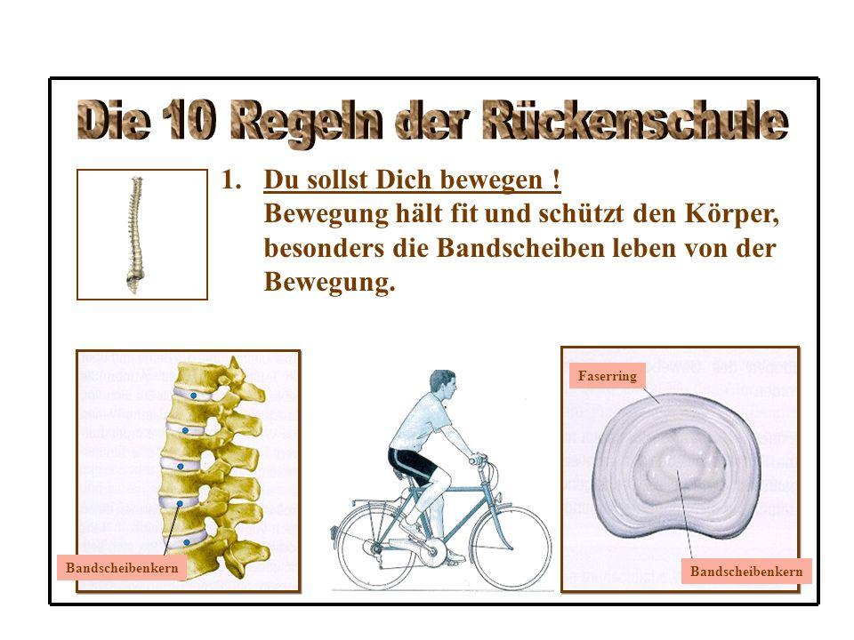 6.Halte beim Sitzen den Rücken gerade und stütze den Oberkörper ab .