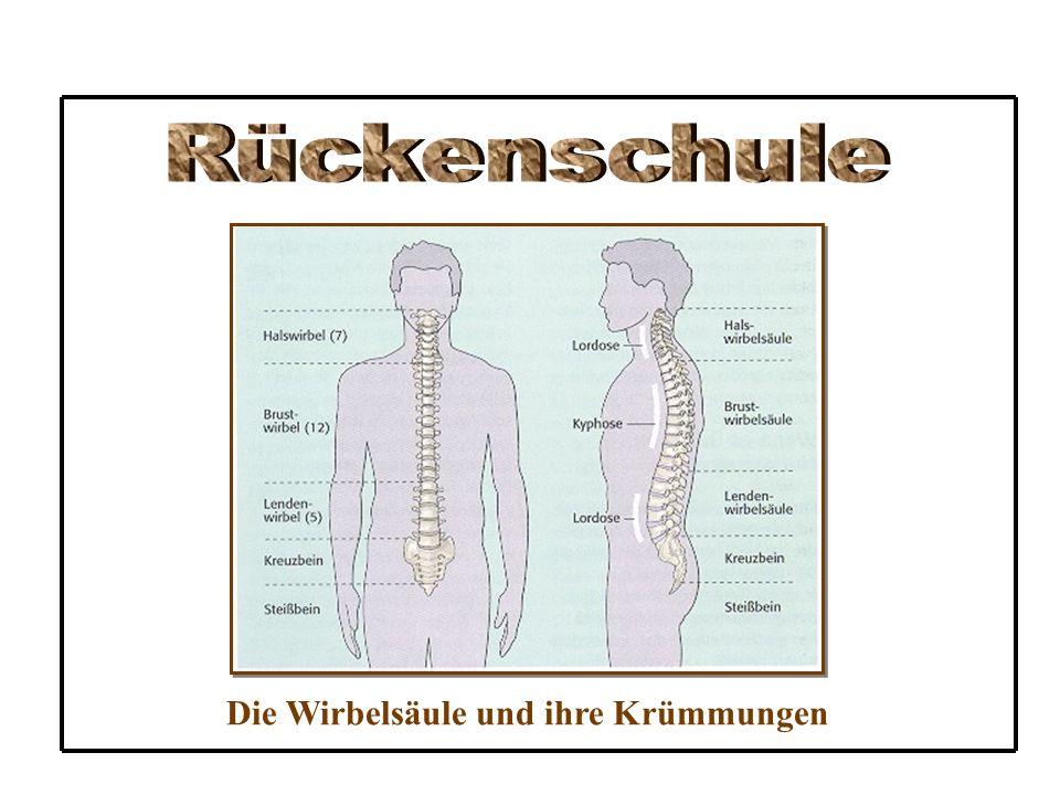 4.Hebe keine schweren Gegenstände .Der Rückenpatient sollte keine schweren Gegenstände heben.