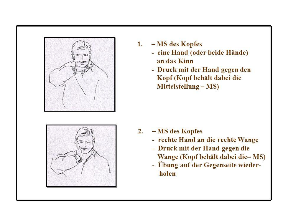 1.– MS des Kopfes - eine Hand (oder beide Hände) an das Kinn - Druck mit der Hand gegen den Kopf (Kopf behält dabei die Mittelstellung – MS) 2.– MS des Kopfes - rechte Hand an die rechte Wange - Druck mit der Hand gegen die Wange (Kopf behält dabei die– MS) - Übung auf der Gegenseite wieder- holen