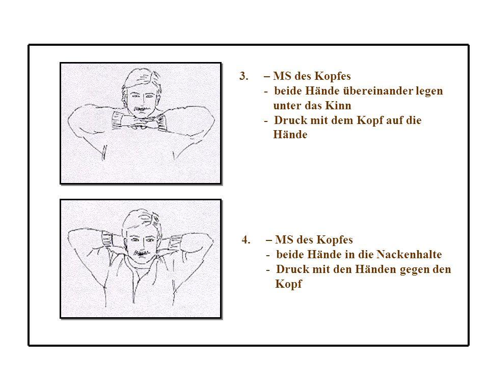 3.– MS des Kopfes - beide Hände übereinander legen unter das Kinn - Druck mit dem Kopf auf die Hände 4.– MS des Kopfes - beide Hände in die Nackenhalte - Druck mit den Händen gegen den Kopf