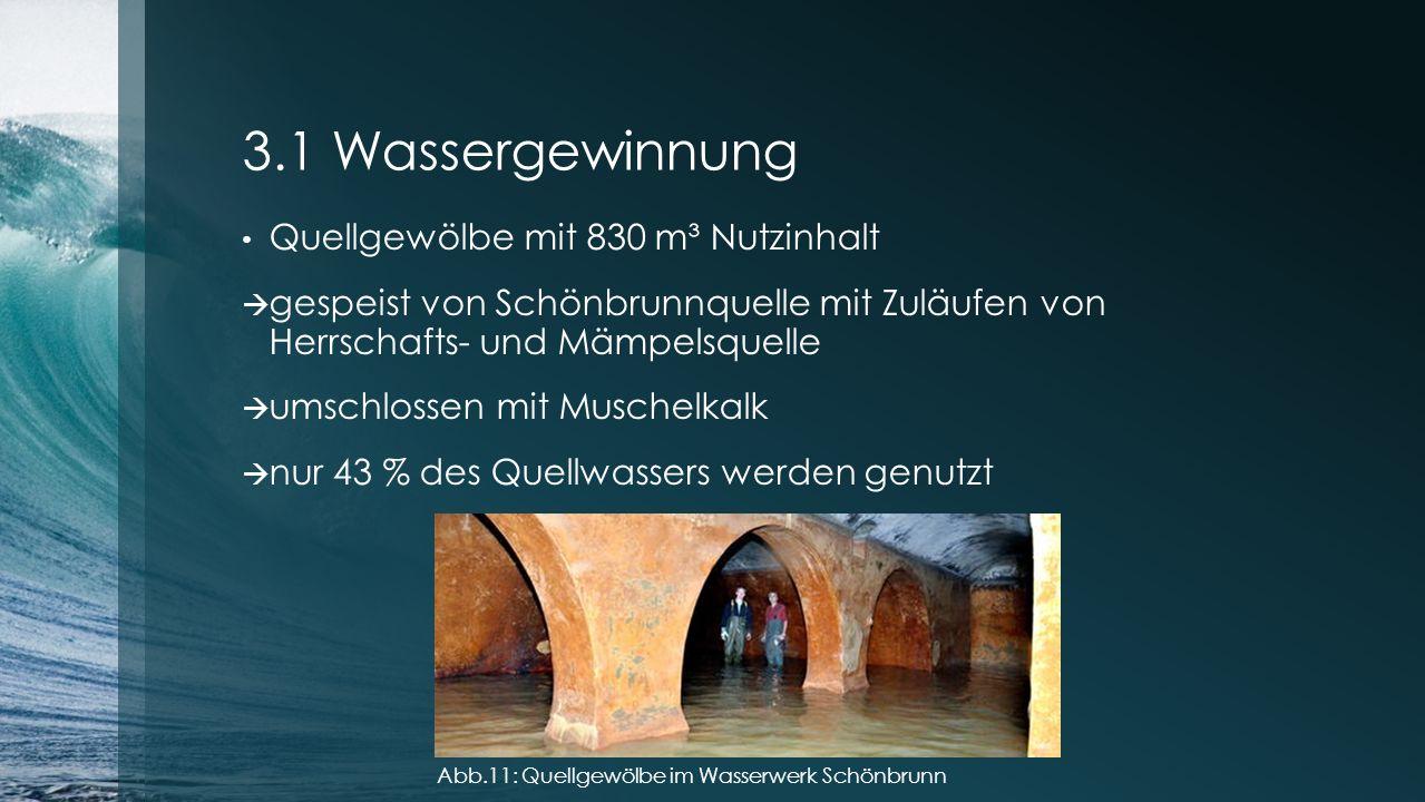 3.1 Wassergewinnung Quellgewölbe mit 830 m³ Nutzinhalt  gespeist von Schönbrunnquelle mit Zuläufen von Herrschafts- und Mämpelsquelle  umschlossen m