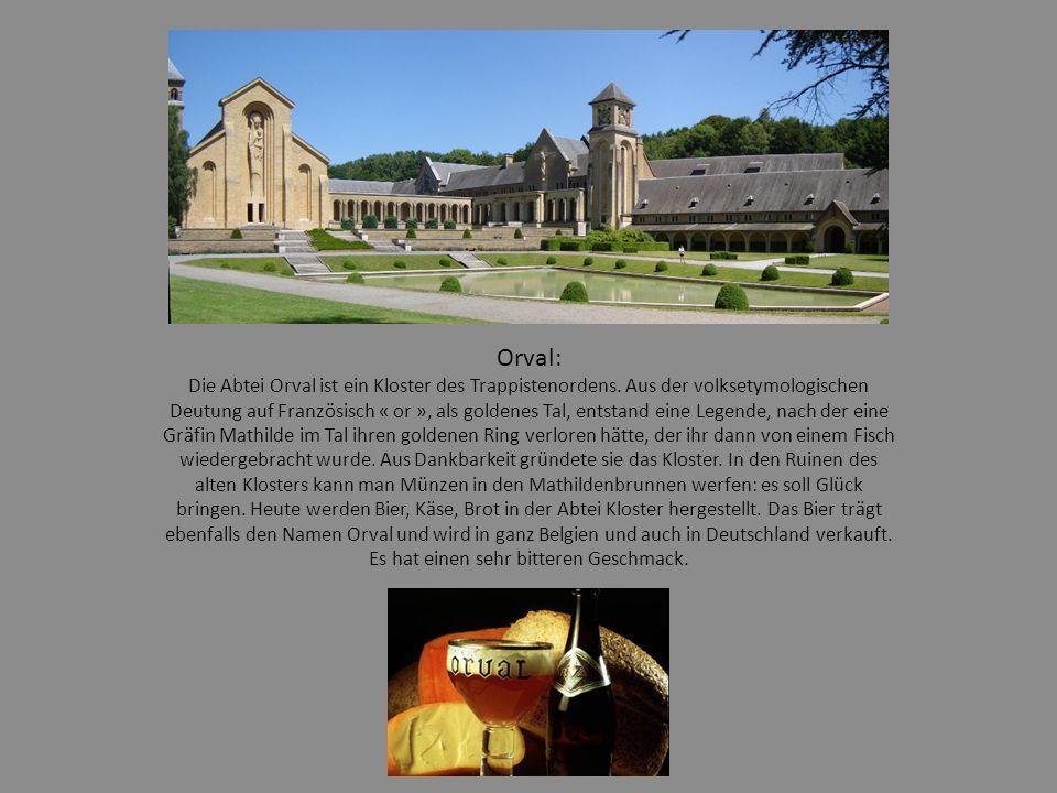 Orval: Die Abtei Orval ist ein Kloster des Trappistenordens.