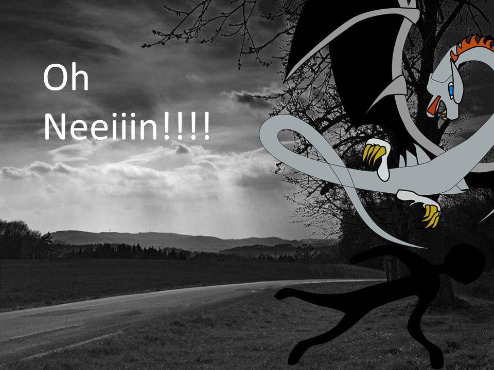 Oh Neeiiin!!!!