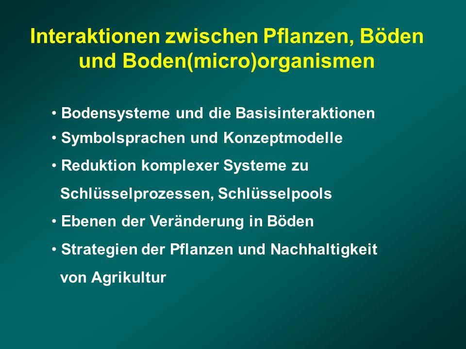 Bodensysteme und die Basisinteraktionen Symbolsprachen und Konzeptmodelle Reduktion komplexer Systeme zu Schlüsselprozessen, Schlüsselpools Ebenen der Veränderung in Böden Strategien der Pflanzen und Nachhaltigkeit von Agrikultur Interaktionen zwischen Pflanzen, Böden und Boden(micro)organismen