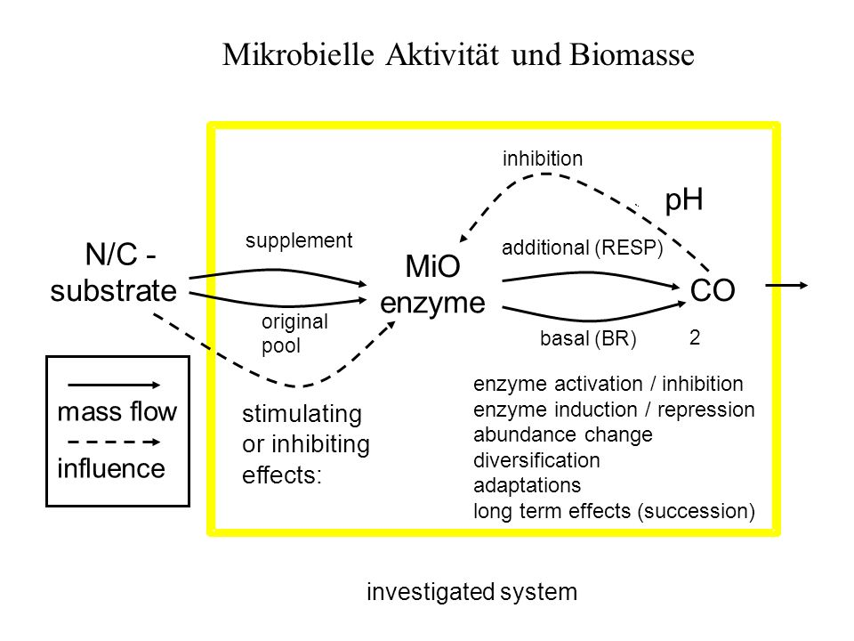 MiO CO 2 additional (RESP) investigated system inhibition substrate enzyme N/C - pH enzyme activation / inhibition enzyme induction / repression abundance change diversification adaptations long term effects (succession) mass flow influence stimulating or inhibiting effects: basal (BR) original pool supplement Mikrobielle Aktivität und Biomasse