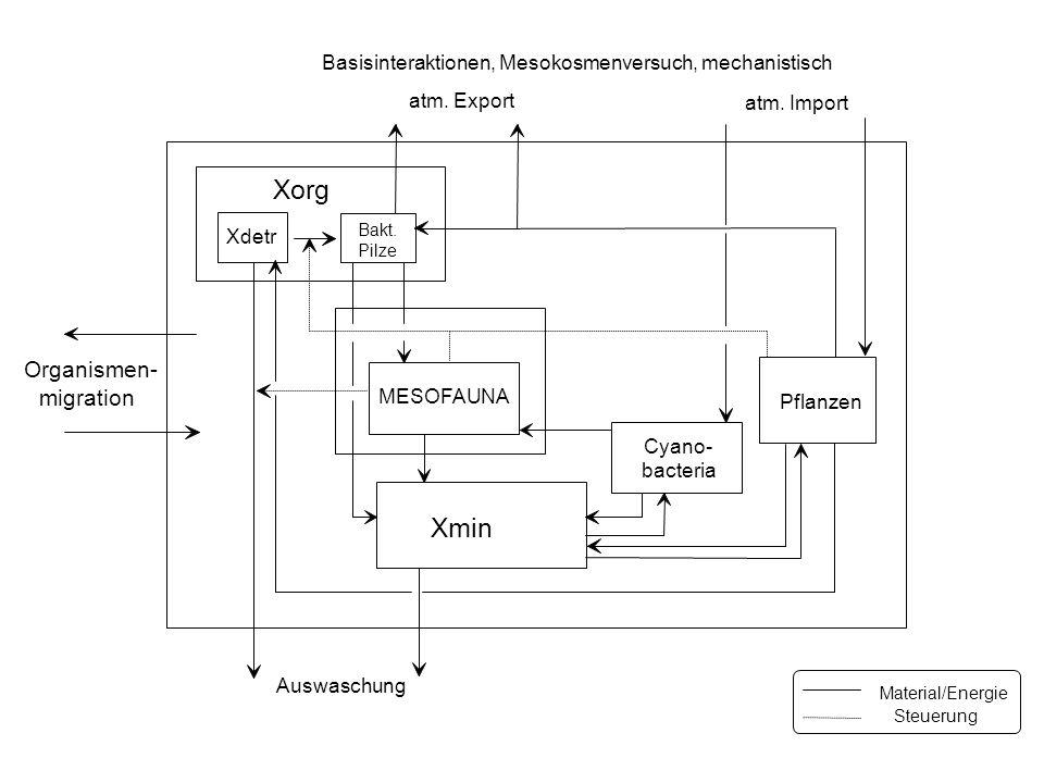Basisinteraktionen, Mesokosmenversuch, mechanistisch Xorg Xdetr Xmin Pflanzen MESOFAUNA Bakt.