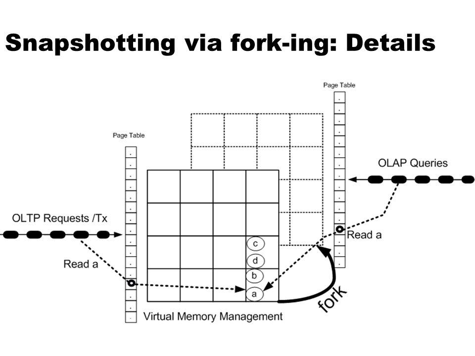 Snapshotting via fork-ing: Details