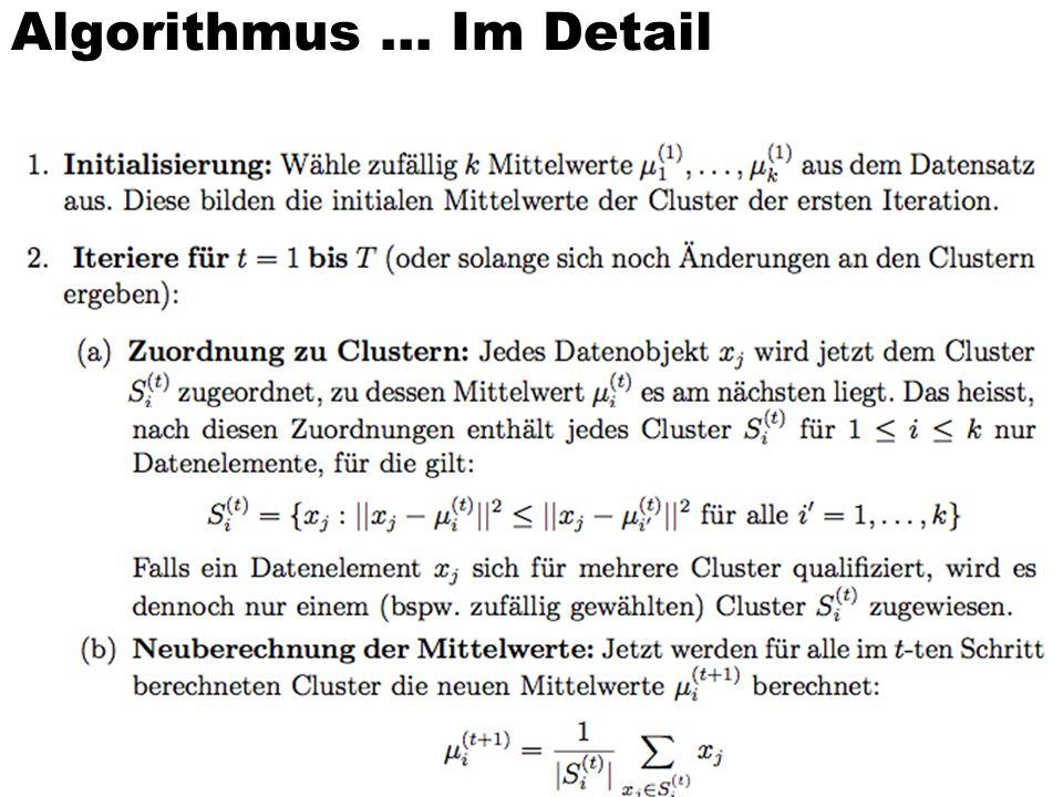 Algorithmus... Im Detail