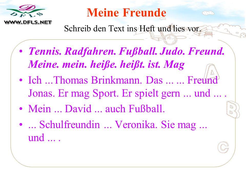 mein Freund mein_ Freundin dein Freund dein_ Freundin Wir spielen gern Fußball.