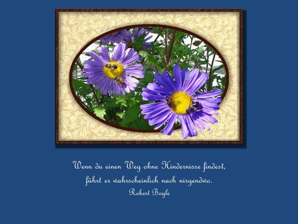 Die Notwendigkeit, einander zu helfen, erleichtert es allen, die Angst zu vergessen.