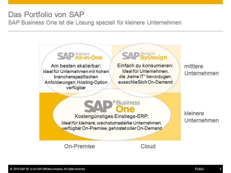 ©2015 SAP SE or an SAP affiliate company. All rights reserved.4 Public Das Portfolio von SAP SAP Business One ist die Lösung speziell für kleinere Unt