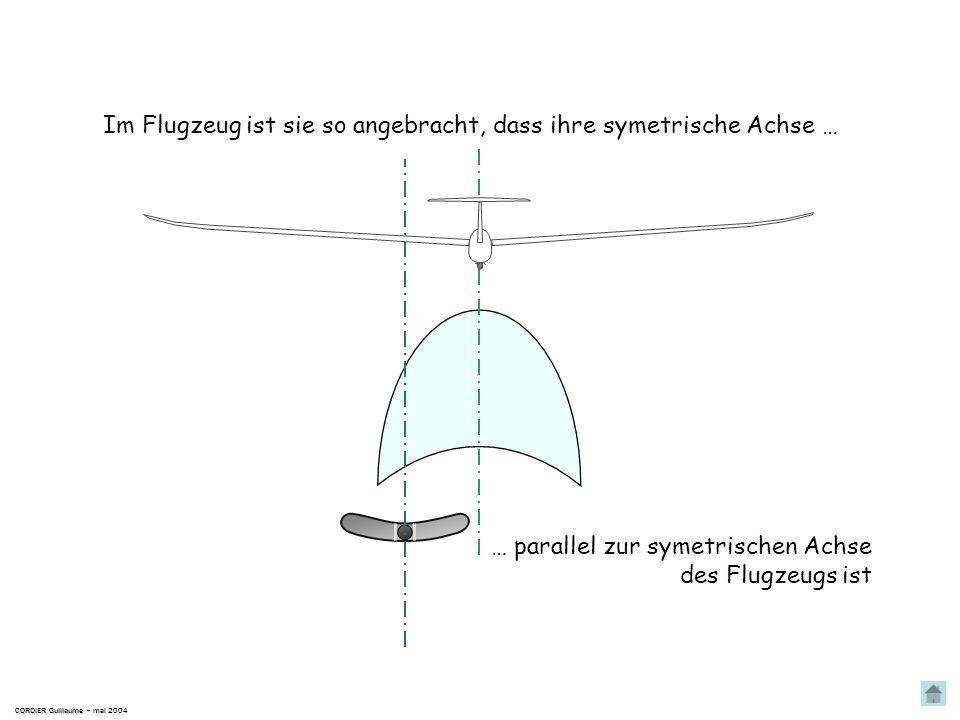 Sie ist vergleichbar mit einem Pendel ; Die Libelle CORDIER Guillaume CORDIER Guillaume – mai 2004 in einem abgerundeten transparenten Rohr, in welche