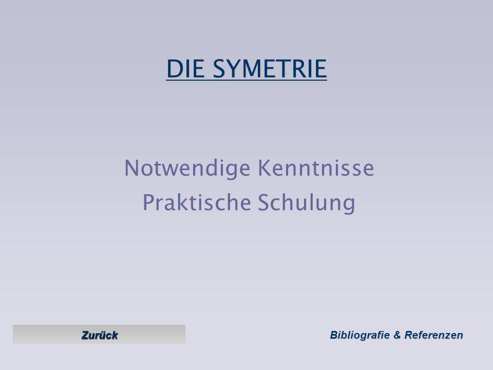 DIE SYMETRIE Ziele : Den Flug symetrisch halten zwecks Version 1 Version 1 – février 2005 Sicherheit, Leistung. Zurück zum Menu Zurück zum Menu