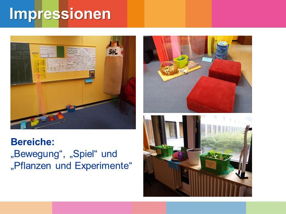 """Impressionen Bereiche: """"Bewegung"""", """"Spiel"""" und """"Pflanzen und Experimente"""""""