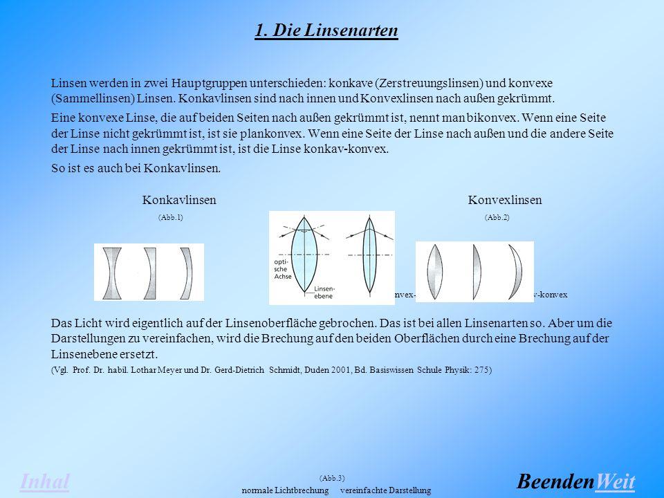 Linsen werden in zwei Hauptgruppen unterschieden: konkave (Zerstreuungslinsen) und konvexe (Sammellinsen) Linsen.