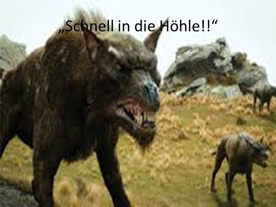 """""""Schnell in die Höhle!!"""