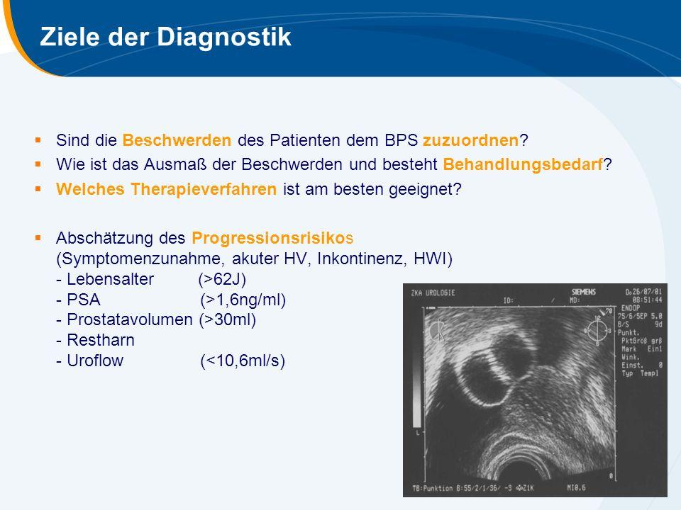  Sind die Beschwerden des Patienten dem BPS zuzuordnen?  Wie ist das Ausmaß der Beschwerden und besteht Behandlungsbedarf?  Welches Therapieverfahr