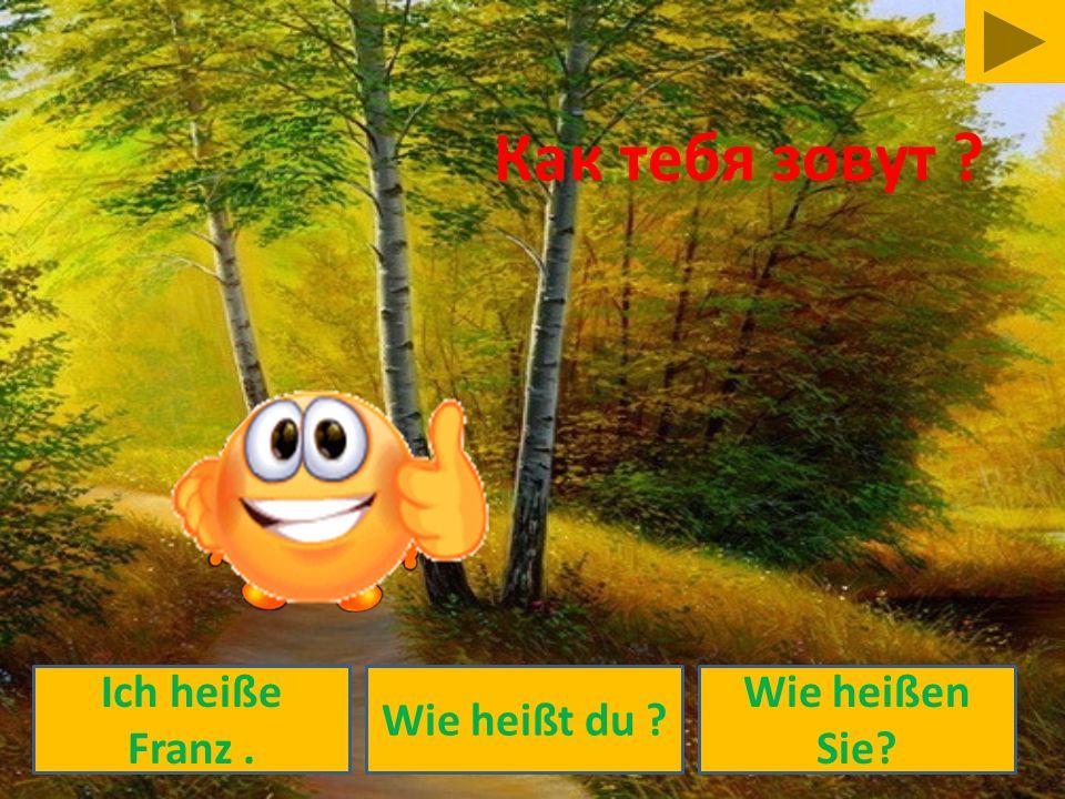 Wie heißt du ? Ich heiße Franz. Wie heißen Sie? Как тебя зовут ?