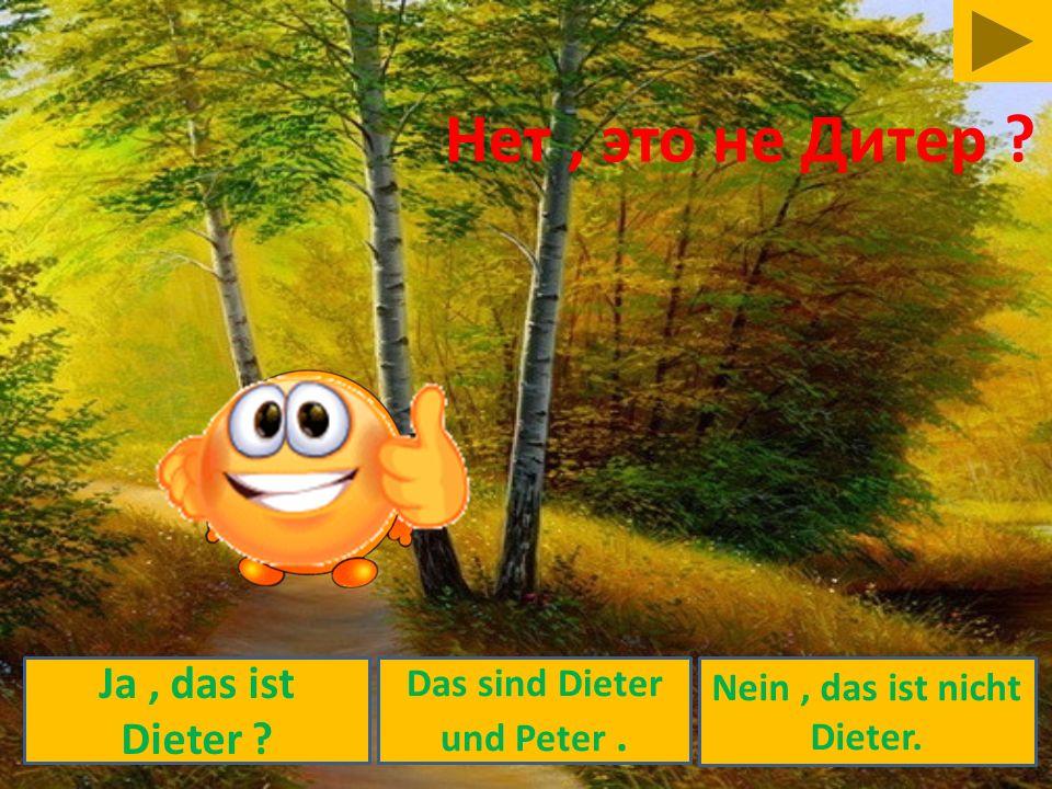 Nein, das ist nicht Dieter. Ja, das ist Dieter ? Das sind Dieter und Peter. Нет, это не Дитер ?