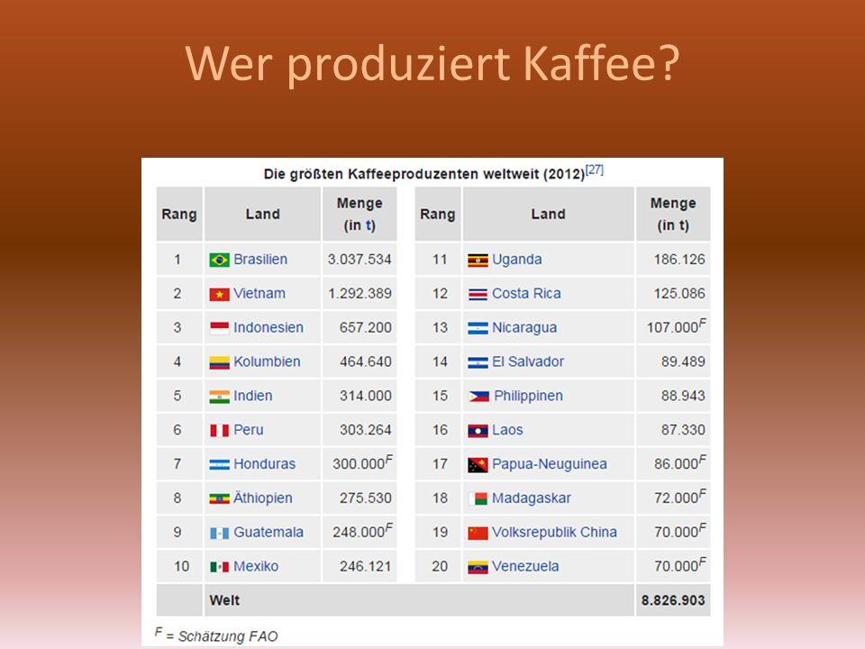 Wer produziert Kaffee?